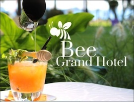 S39 bee grand hotel
