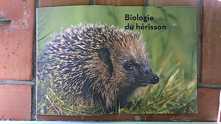 Sauvons Les Herissons Editions Larousse Nice Rendezvous