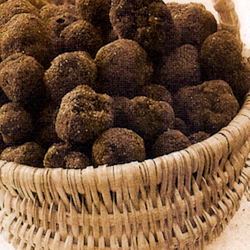 truffes-guillaumes