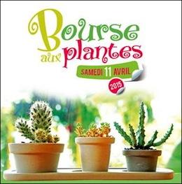 Nice bourse aux plantes 2015 au jardin botanique for Jardin aux plantes