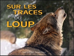 loup-terre-provence