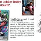 Nice Croq'Chat Rose de l'artiste Jérémy Taburchi présenté au restaurant O'Quotidien