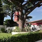 Nice Exposition L'Élégance, Hommage à Coco Chanel au Château de Crémat