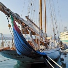 Dans le Carnet de Nice Rendez Vous Semaine 48 - Sorties, loisirs, expos, gastronomie, tourisme