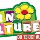 Festival Brin de Culture 2017 Provence Alpes Côte d'Azur, 10e anniversaire
