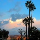 Dans le Carnet de Nice Rendez Vous Semaine 42 - Sorties, loisirs, expos, gastronomie, tourisme
