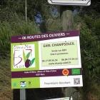 La Caillette AOP Olive de Nice de ChampSoleil Star des Podiums et Ambassadrice de la Riviera Côte d'Azur