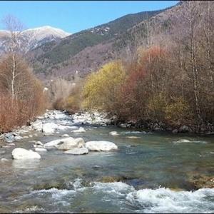Ouverture de la Pêche à la Truite dans les Alpes Maritimes Saison 2020