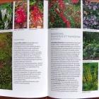 Toutes les Plantes pour Sol Calcaire éditions Ulmer Nice RendezVous rayon Livres