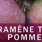 Ramène ta pomme à Puget-Rostang